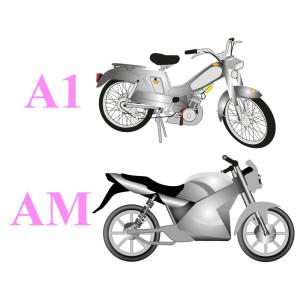 Категории A1 и AM