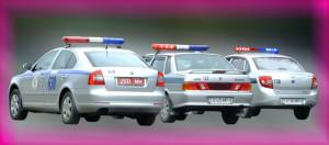 Ожидая полицию, лучше самостоятельно сфотографировать на телефон свой автомобиль, его положение на дороге, ближайшие дорожные знаки и так далее, то есть все, что может касаться ДТП.