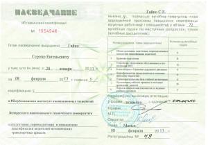 Сертификат повышения квалификации Гайко Сергея Евгеньевича. Выдан 28 января 2013г.